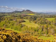 Lowlands - Rosslyn Chapel & Scottish Borders Tour