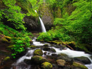North_America_USA_Portland_shutterstock_106338752
