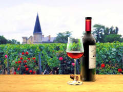 Wine tour of Medoc and Saint Emilion