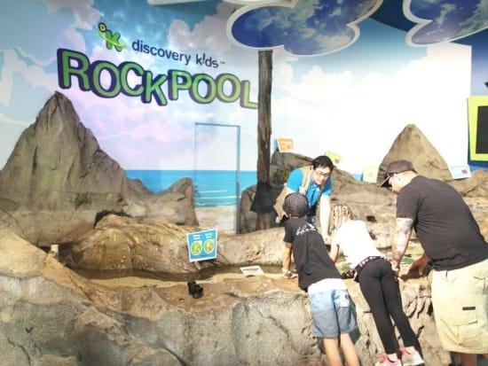 Discovery Kids Rockpool 3_resized