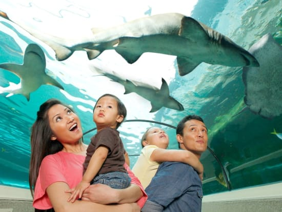 Family in Shark Valley at SEA LIFE Sydney Aquarium_resized