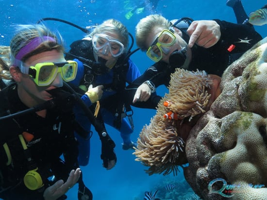 outer-barrier-reef-pontoon-platform-learn-to-dive-nemo