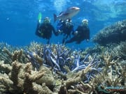 outer-barrier-reef-pontoon-platform-learn-to-dive-corals