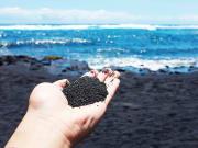 Big Island_black sand beach_shutterstock_411049996