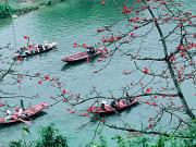 spring perfume pagoda festival
