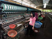 Da Lat Silk Factory