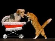 Las Vegas_Popovich Comedy Pet Theater_CatDog