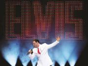 USA_Las Vegas_Vegas! The Show_Elvis Presley Show