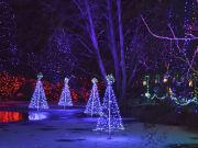 Canada_Vancouver_VanDusen-Botanical-Garden_Christmas-lights_shutterstock_782538706