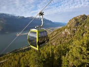 Gondola on line - Paul Bride (1)