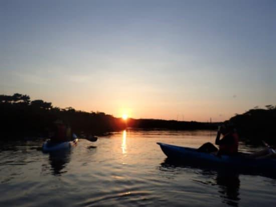 マングローブ林の向こうに沈む夕陽