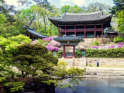 Korea_Seoul_Changdeokgung_Palace_shutterstock_632684411