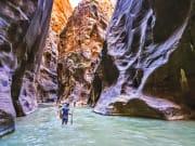 USA_Utah_Zion-National-Park_Narrows_shutterstock_432882991