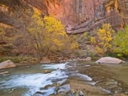 USA_Utah_Zion-National-Park_Temple-of-Sinawava_Virgin-River_shutterstock_755669581