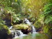Hawaii Tropical Botanical Garden_shutterstock_648688423