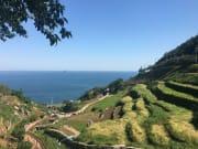Daraengi Village's terraced rice fields