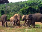 wildlife park-6