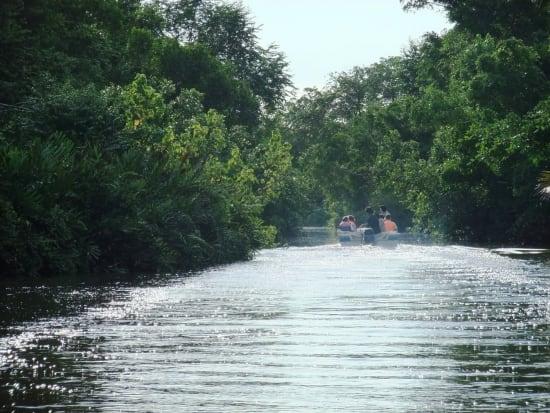 River Cruise & Hotaru-2