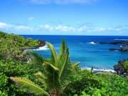 Stardust Hawaii RoadTrip to Hana 6