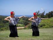 Kauai Fantasy Tour-4