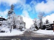 冬のバンフ街並み