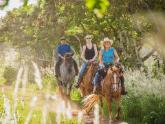 Hawaii_Oahu_Gunstock Ranch_Scenic Ride