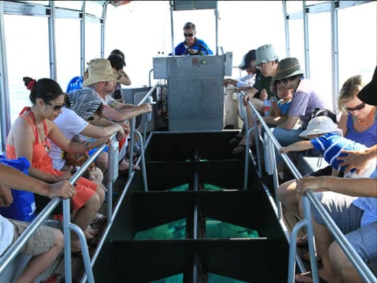 glass bottom boat2