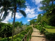 Fijii_Garden of the Sleeping Giant_shutterstock