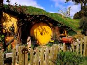 Hobbiton Express Auckland Tour Hobbit Holes