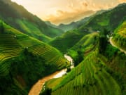 Terraced rice fields near Sapa, North Vietnam