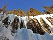 Canada_Alberta_Banff-National-Park_Johnston-Canyon_shutterstock_38751841