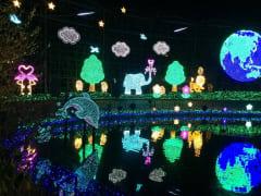 Japan_Tochigi_Ashikaga_Flowers_Park_winter_illuminations_shutterstock_710890873