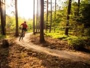 Mornington Peninsula Adventure Bike