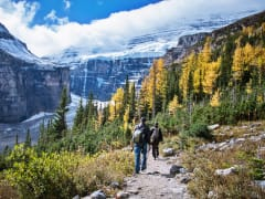 Canada_Banff-National-Park_Lake-Louise_Plain-of-Six-Glaciers_shutterstock_1062747521