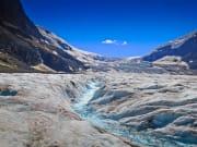 Canada_Canadian-Rockies_Athabasca-Glacier_shutterstock_532364371