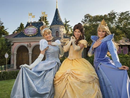 Disneyland paris and walt disney studios admission ticket for 2 or 3 meet and greet with disney princesses m4hsunfo