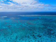 Australia_Cairns_Great_Barrier_Leaf_123rF_8269570