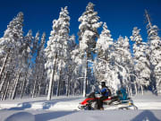 Snowmobile Ride Lapland Safari