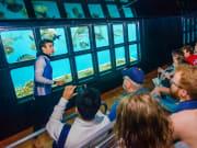 underwater-observatory-moore-reef