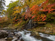 Fudo Stream, Nakano Momiji Mountain