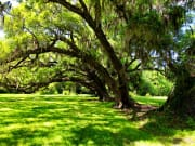 usa_louisiana_new orleans_plantation guided tour
