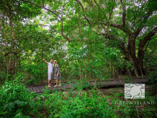 Green Island Resort7