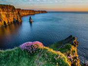 Cliffs of Moher Day Tour from Dublin (1)