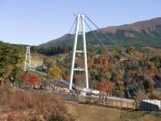 九重夢大吊橋(1)