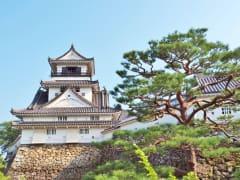 Japan_Kochi_Catsle_shutterstock_509665354