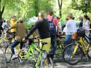 Guided Dutch Tour