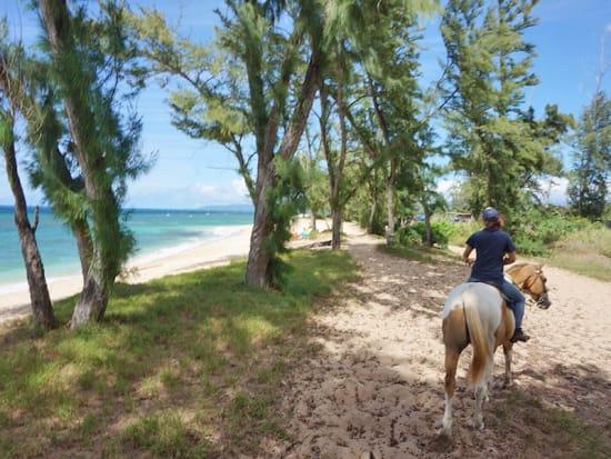USA_Hawaii_Horseback-Ride
