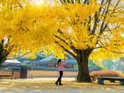 korea_seoul_gyeongbokgung-palace_autumn_shutterstock_714343753