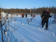 Snowshoe Trekking in Tromso Norway