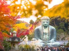 Japan_Kamakura_Daibutsu_shutterstock_749491585